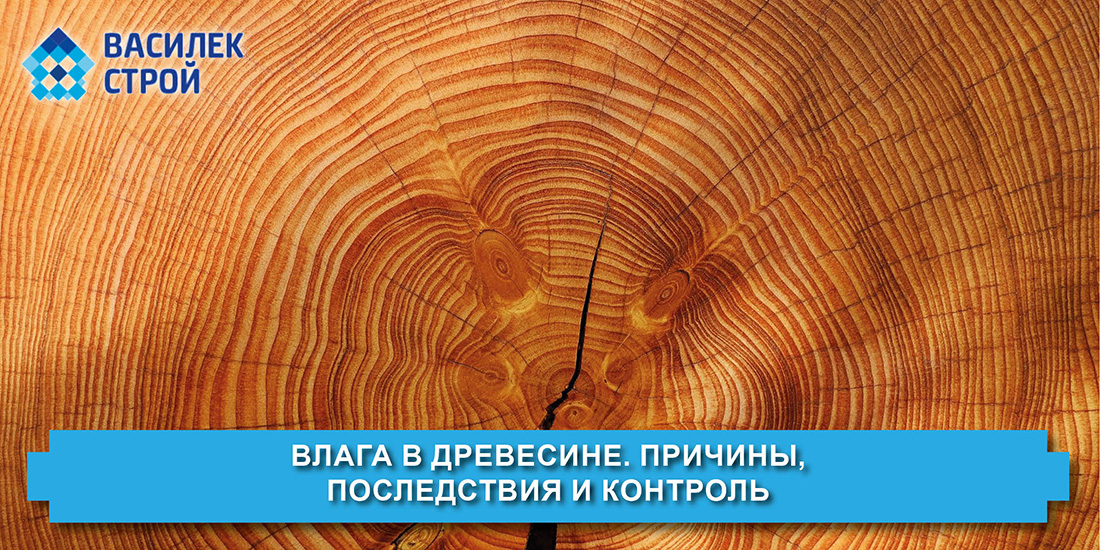 влага в дереве