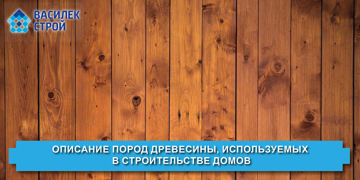 Описание пород древесины, используемых в строительстве домов